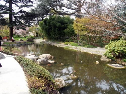 nature,environnement,japon,jardin,zen