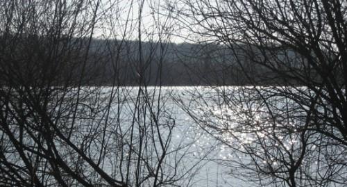 11-03-14 Etang Curecy3.jpg
