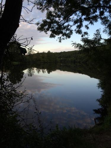 15-09-14 Mayenne4.JPG