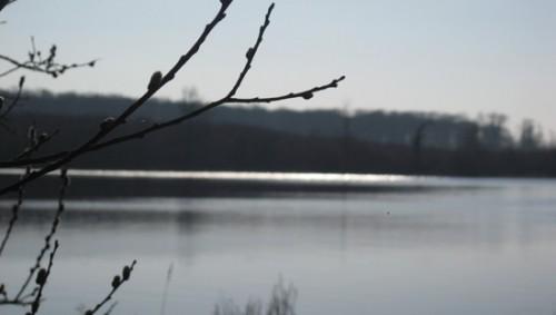 11-03-14 Etang Curecy1.jpg
