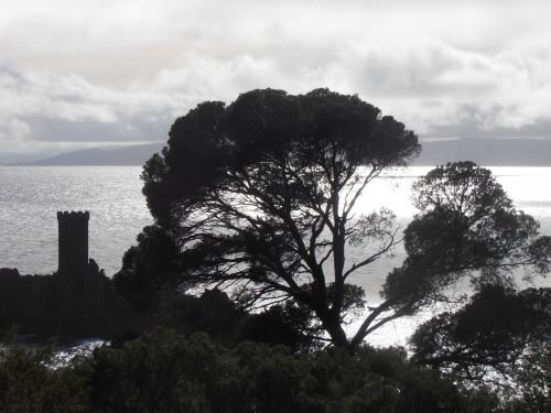 13-03-30 L'île noire 2.JPG