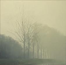Canal dans le brouillard.jpg