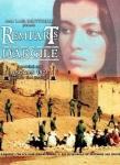 cinéma,maghreb,rapport femme-homme