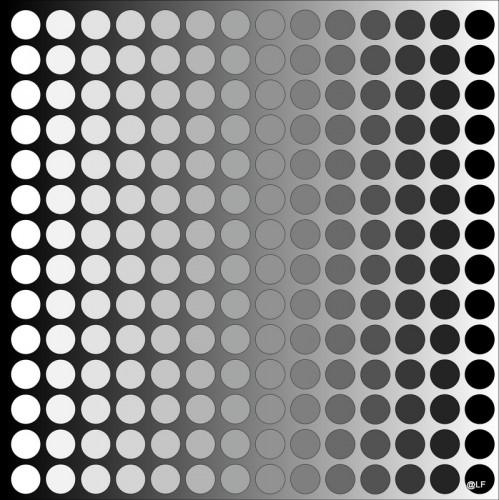 12-06-05 E36 cercles.jpg